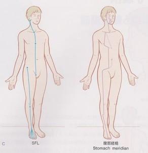浅前線と胃経